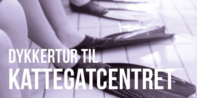 beviser_dykning_kattegatcentret